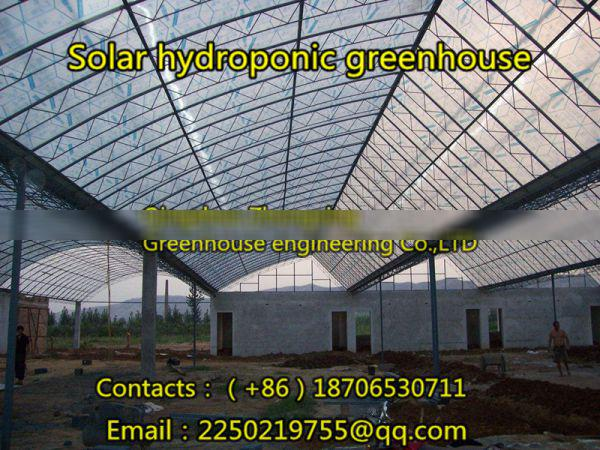 Zhongxing Greenhouse Engineering Co.,Ltd