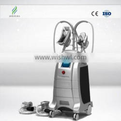 Loss Weight 2015 Hot Selling Cryolipolysis Fat Freeze Slimming Machine Lose Weight