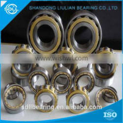 2016 new arrival stocked cylindrical roller bearing NJ1038