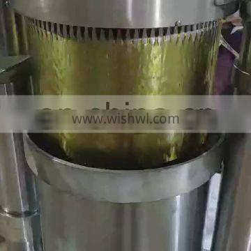 High extraction rate hydraulic cold pressed machine