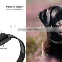 GPS dog collar Tracking on APP of Android and iOS Longest battery mini gps tracker for cat