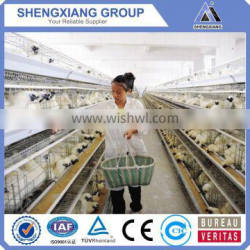 Pvc coated types of bird chicken layer cage TUV CE 20 years lifetime layer chicken cages with Auto water system
