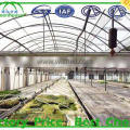 high quality geodesic dome greenhouse for sale