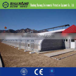 vegetable greenhouses for sale/greenhouses for roses/vegetable seeds greenhouse