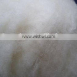 China factory dehaired and carded chinese sheep wool for sale