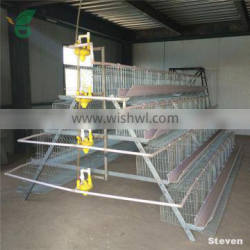 Pyramid steel frame full automatic A type chicken layer battery cage for India