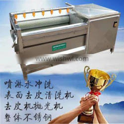 Fruit Vegetable Washer Lettuce Washing Cleaning