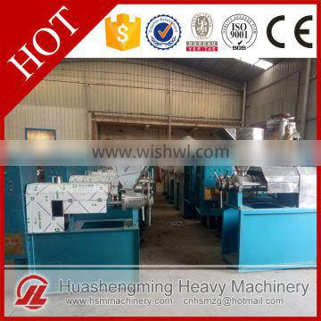 HSM ISO CE Reliable Perfect Workmanship Cold Press Oil Seed Machine