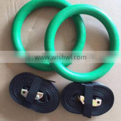 ABS plastic gymnastic ring