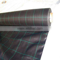 PP Woven Silt Fence/Agricultural Weed Mat/woven geotextile with low price