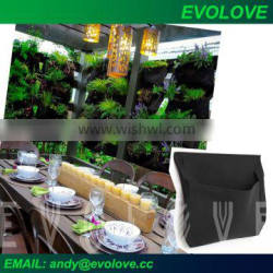 Evolove pocket with auto-watering system