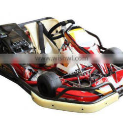 Go Karting with 200cc for adult