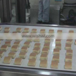 Full Automatic Layer Cake Product Line