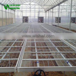 Polycarbonate Greenhouse Planting Table And Planting Benches