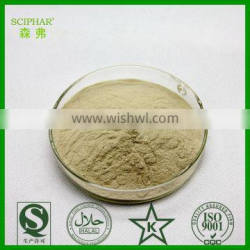 Top quality Yeast extract for nutritional food