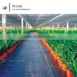 Cheap plastic mulch anti weed glass pe mat for agriclturalor garden cover