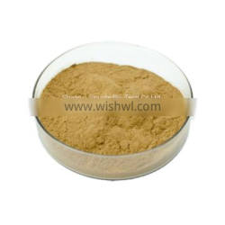Top Quality Water Soluble Tricholoma Matsutake Extract Powder