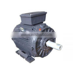 IE2 Standard Synchronous Speed Cast Iron Three Phase Electric Motor