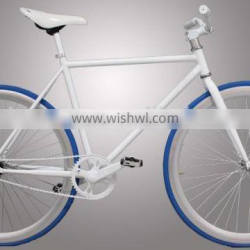 simple design fixed gear bicycle