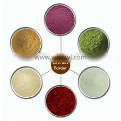 ISO Certified Factory supply Butterbur Extract powder