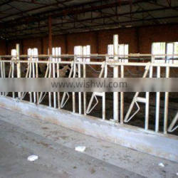 Hot sale wholesale Dairy cattle equipment headlocks