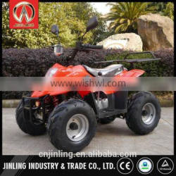 Professional 110cc atv plastic parts made in China