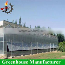 High Quality Polycarbonate Greenhouses for Tomatoes