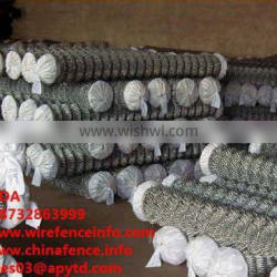 Stainless Steel Chain Link Fence/PVC-coated Chain Link Fence