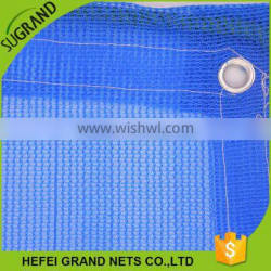 PE New Arrival Building Scaffold Screen