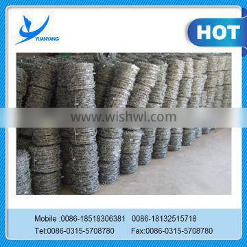 sale Galvanized Barbed Wire fence
