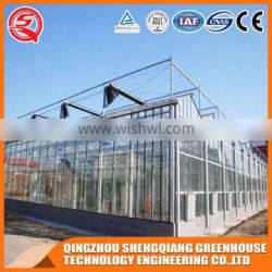 Factory outlet large Multi-span PC sheet agricultural-commercial Greenhouses
