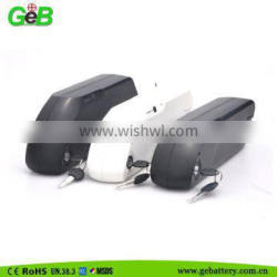 New Arrival Dolphin II case 48v 10Ah lithium electric bicycle battery