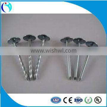 "9G*2-1/2"" building material dubai and arabic ROOFING NAILS BWG11X2"" X25KGS CARTOON"