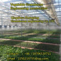 To build winter warm type greenhouse