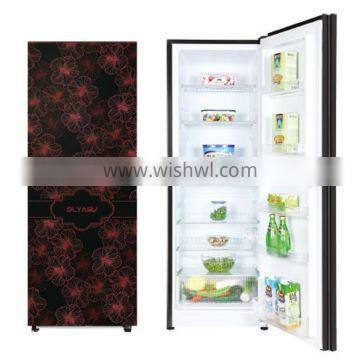 2019 NEW BCD210 210L double door Refrigerator Colorful Refrigerator