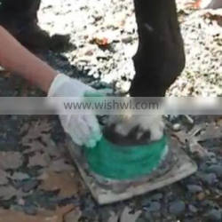 Molding Equine Hooves protecter