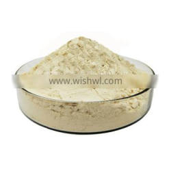 Liquorice Root Extract / Licorice Root extract powde rwith free sample