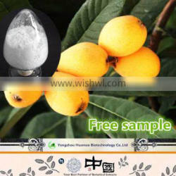 High Quality Herbal Extract Rosemary Extract 10:1 Ursolic Acid from loquat Leaf
