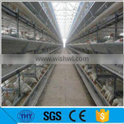 A frame stock design layer chicken cages for kenya hen farm