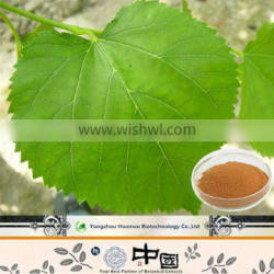 2015 new products DNJ mulberry powder