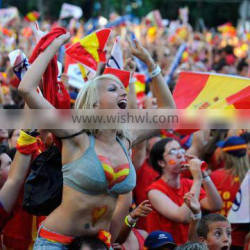 2016 Euro football fans paint face lady face cosmetics sets