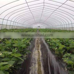 Plastic Film High Tunnel Greenhouse Roll Up Motor for Ventilation
