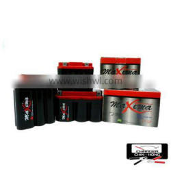 Scooter/ATV/Jet Ski/Electric Bicycle/Motorcycle Battery Maxima