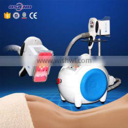 Portable Cryolipolysis Machine Cellulite Reduction For Beauty Salon Use 500W