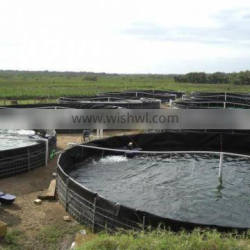 the most economical recirculating aguaculture system(RAS)