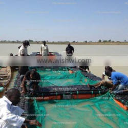 tilapia fish farming cages in rivers