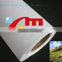 Polyester Decorative Glossy Canvas