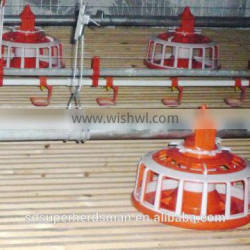 poultry automatic feeders for chickens