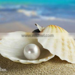 2015 Hot Sale Water Soluble Pearl Powder