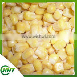 Frozen Iqf Sweet Corn Kernels With Good Quality And Hot Price